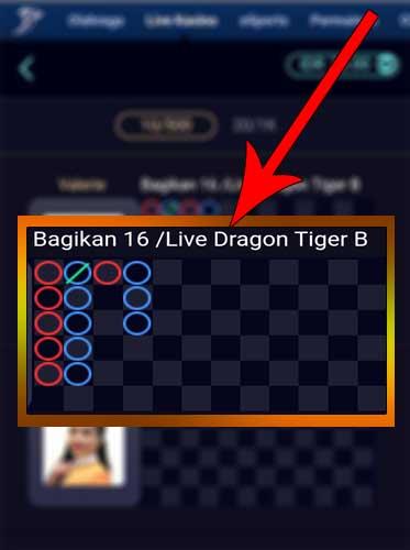 dragon-tiger